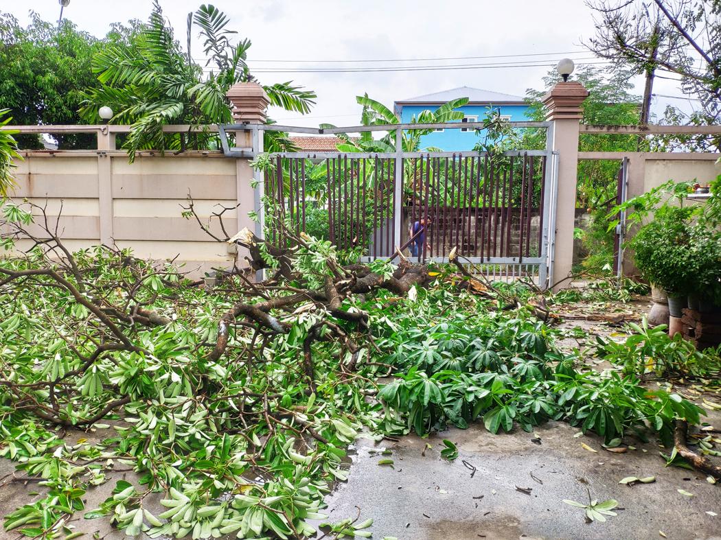 assurance habitation jardin couvert ?